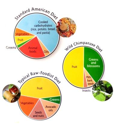 Standard diet vs raw vs chimpanzee