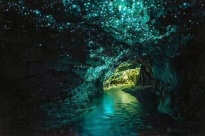 Waitomo-Caves-New-Zealand
